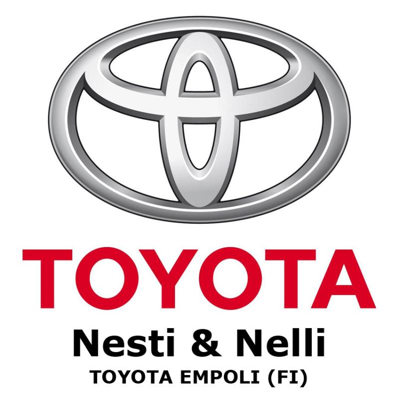 Toyota Nesti e Nelli